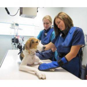 Guantes plomados para radiología veterinaria